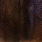 Ilus pruun triipudesse kammitud kunstkarusnahk Nr.8