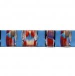 Värviline maiustustega pael Half cotton lace / 22mm