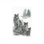 Cross-Stitch Kit RIOLIS Premium 100/021 Wolves