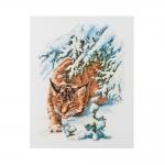 Tikkimiskomplekt Ilves Art.Premium 100/020 firmalt Riolis