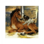 Cross-Stitch Kit Riolis 0052 PT Foal and Puppy