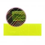 Neoonkollane läbipaistev joonlaud 5 cm x 15 cm, Le Summit QR-0515F