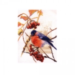 Cross-Stitch Kit Panna, PT-1185