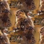 Trikookangas Tähesõdade - Star Wars`i teemaline, 127.200