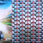 Ralliteemaline, trikookangas kupongina 70 cm x 150 cm, Stenzo, 15248