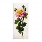 Tikkimiskomplekt 1331 Kirju roos firmalt Riolis