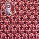 Kassipoeg ja varblane, roosimuster trikookangas, kangakupongi mõõtmed 150cm x120cm Art.4892