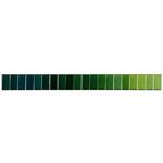 Doli värvivalik Nr.6 Rohelised toonid