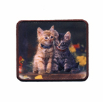 Embroidered Iron-On Patch; Kittens / 7 x 5,5cm