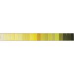 Doli värvivalik Nr.2 helekollakad ja rohekad toonid