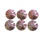 Mummulised, krobelise pinnaga, tahulised dekoratiivkivid 17mm, 6tk või 4tk pakis
