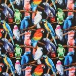 Papagoidega, puuvillast trikookangas, 150cm, DIGI 30138