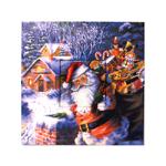 Jõulupühateemaline seinapilt 20x20cm