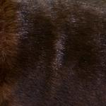 Punakaspruun, tugeva läikega, tiheda karvaga kunstkarusnahk Nr.15