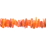 Dyed Polished Shell Beads / 3-15mm