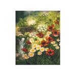 Наборы для вышивания нитками на канве с фоновым рисунком СР3142 У ручья / НОВАЯ СЛОБОДА