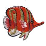 Triigitav Aplikatsioon; Korallkalake ujub, paremale / 7 x 6cm
