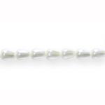 Tilgakujuline pärlmutter 6x4mm klaashelmes