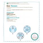 Circular Farm Animal Placemats, Kwik Sew K0217