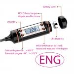 Elektrooniline pisttermomeeter, nn toidutermomeeter, protsessitermomeeter -50°..+300°C, KL1710