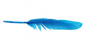 QL4 Sinine sulg 14-18cm pikkusega