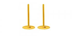 Kõrvarõnga toorikud Kuldsed / 11mm / EC34