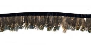 QA4 Pruunikas hallikas triibuline sulepael, 10cm ca 9-11 sulge