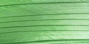 Roheline metallik pael
