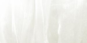 Loodusvalge organza laiusega 150cm Art.4130-03