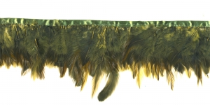 QB12 Samblaroheline, 10cm ca 23-27tk