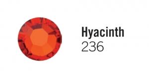 236 Hyacinth