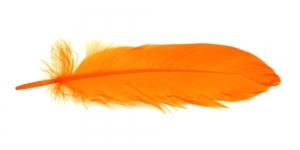 QK11 Oranž sulg 14-18cm pikkusega
