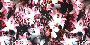 Kirju lillemustriga trikookangas 155cm, KC7502-300
