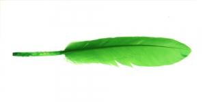 QL1 Roheline sulg 14-18cm pikkusega