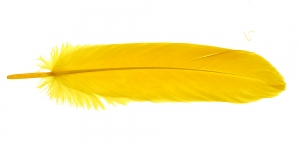 QK10 Kollane sulg 14-18cm pikkusega