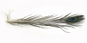 QJ7 Paabulinnu sulg 27-30cm pikk, 15-17cm lai