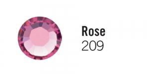 209 Rose