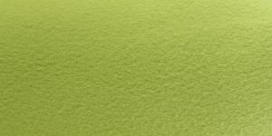1002 Ühevärviline õunaroheline fliis