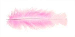 Heleroosa sulg 14-18cm pikk, 4-6cm lai