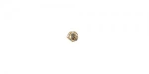 Vahedetail Kuldne värvitute kivikestega / 6mm / EN150