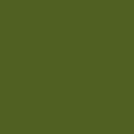 Оливково-зеленыe