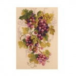 Tikkimiskomplekt 1455 Viinamarjad firmalt Riolis
