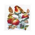 Tikkimiskomplekt 2002/70.362 punarind õuntega firmalt Vervaco