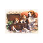 Tikkimiskomplekt koerad kohvriga / Riolis (Venemaa) 1328