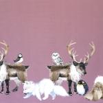 Arktika ja antarktika loomade-lindude mustriga, veniv puuvillasegu kangas 12207 150cm