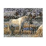 Tikkimiskomplekt Valge hobune talvisel maastikul 40x32cm