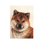 Tikkimiskomplekt Koera portree 1280 firmalt Riolis