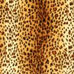 Pruunikirju leoparditäpiline kunstkarusnahk, 155cm