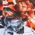 Suurte lilledega veniv viskooskangas, 150cm, 13001
