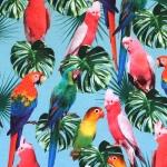 Kirjude papagoidega (Parrots) veniv puuvillasegu kangas, 155cm, KC7502
